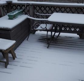 snow for Xmas